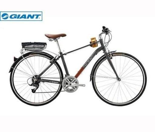 Xe đạp Giant Ineed Cappuccino 2016