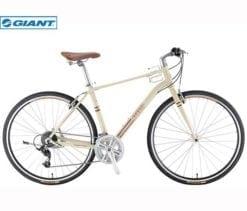 xe đạp Giant Ineed 1900