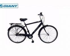 Xe đạp thành phố Giant Ineed Master