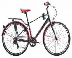 Xe đạp thể thao Giant Ineed Mocha 2019
