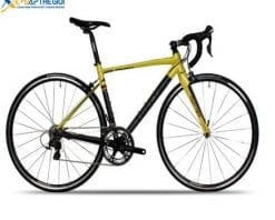 xe đạp đua Twitter 751