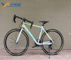 Xe đạp đua Trinx Tempo 1.0 2017