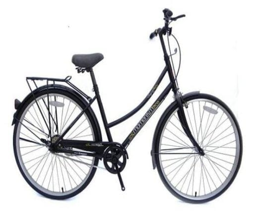 Xe đạp Giant Ineed Singing