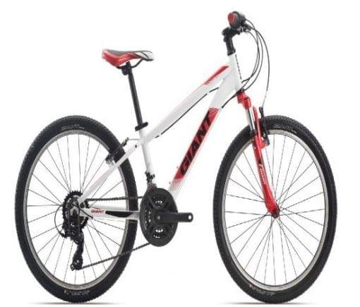 Xe đạp thể thao Giant XTC 24 2019