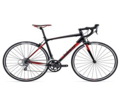 Xe đạp thể thao Giant Contend 2 2017