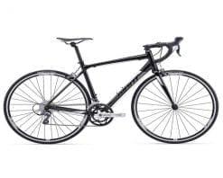 Xe đạp thể thao Giant Contend 3 2017